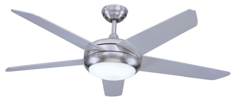 Neptune 54inch Ceiling Fan with Light Brushed Nickel