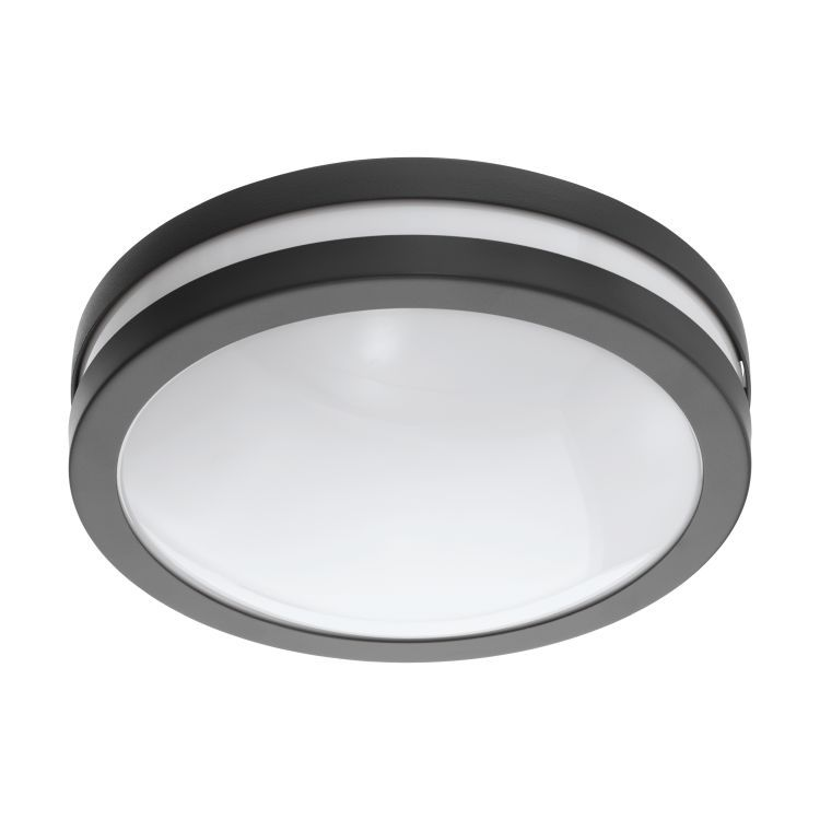 LOCANA-C Outdoor Wall/Ceiling Light Anthracite