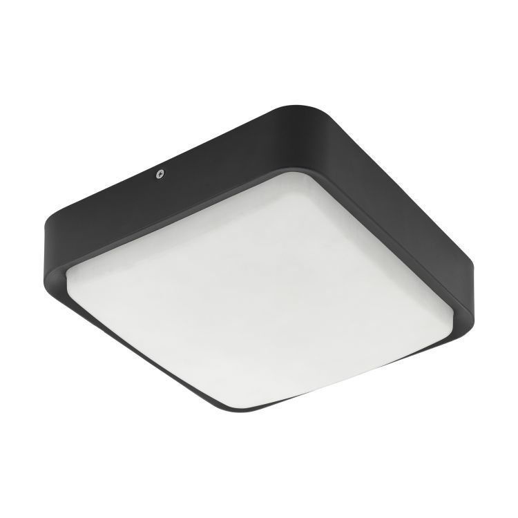 PIOVE-C Outdoor Wall/Ceiling Light